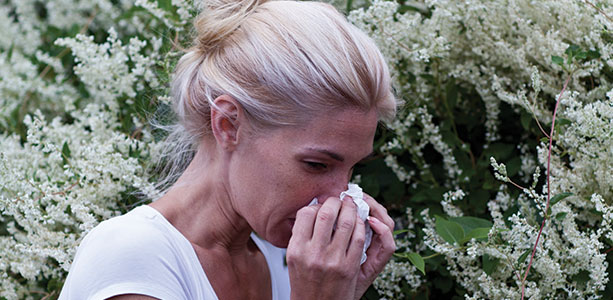 Fight Spring Allergies Early Gloria Gilbere