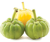 Optimizing the Benefits of Garcinia Cambogia