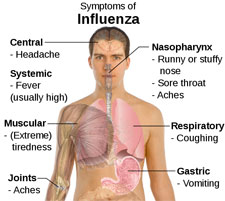 The History of Influenza