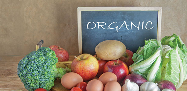 Why Choose Organic? Elly McGuinness