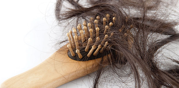Do Oral Contraceptives Contribute to Hair Loss In Women? Ross Pelton RPh, PhD, CCN
