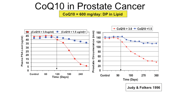 CoQ10 in Prostate Cancer