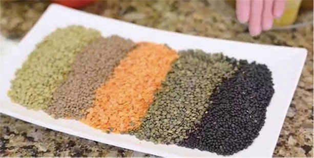 types of different lentils