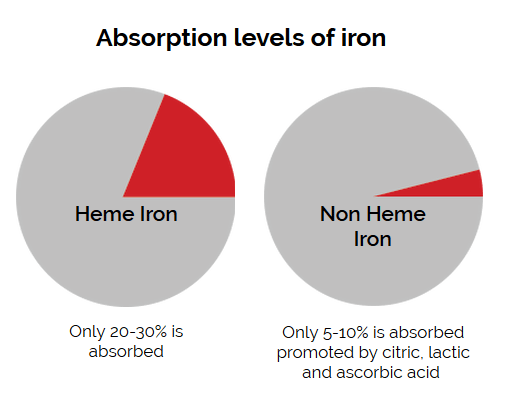 IronCatch Absorption levels of Iron
