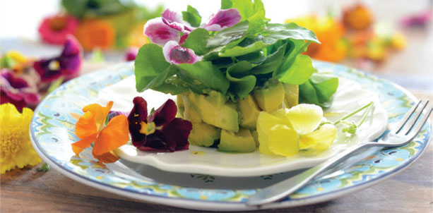 April Showers Bring May Edible Flower Recipes Gloria Gilbere