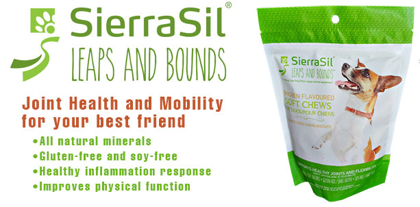 SierraSil Leaps and Bounds Pet Chews