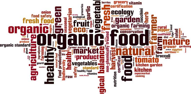 Why Choosing Organic is a Healthy Choice Elly McGuiness