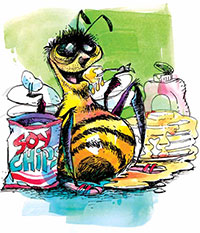 Bee Nutrition & Bee Medication